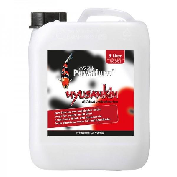 Pawafuru® Nyusankin Milchsäurebakterien