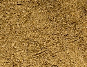 Insekten Protein Pulver 250g