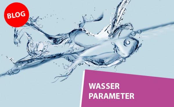 Blog_Teaser_Wasser