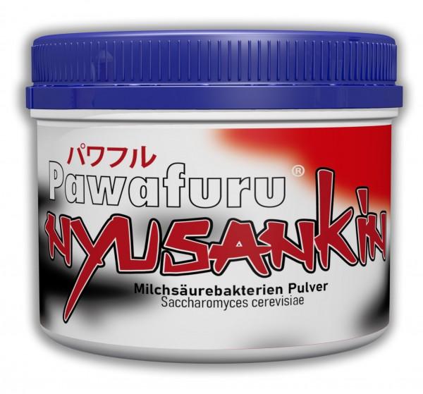Pawafuru® Nyusankin Milchsäurebakterien Dry