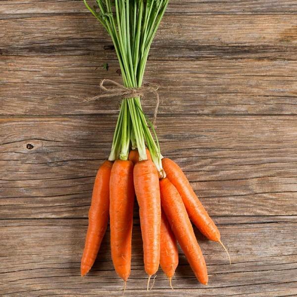 Petto® Karotten Pulver